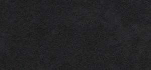 alcantara negra
